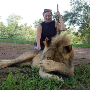 Wanda in Africa with young male lion